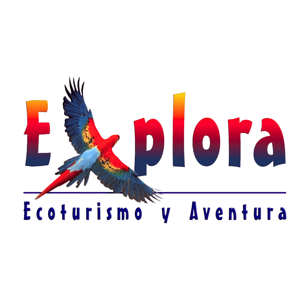 Explora Travel México